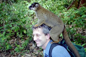 Robert Newman with lemur on his head