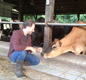 Rabinowitz on dairy farm