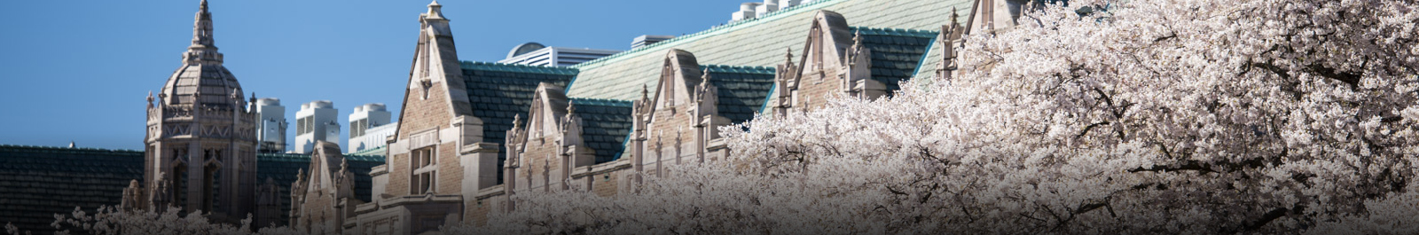 Alumni Updates | UW School of Public Health